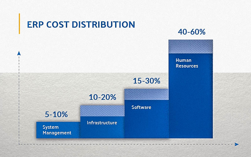 ERP cost distribution chart